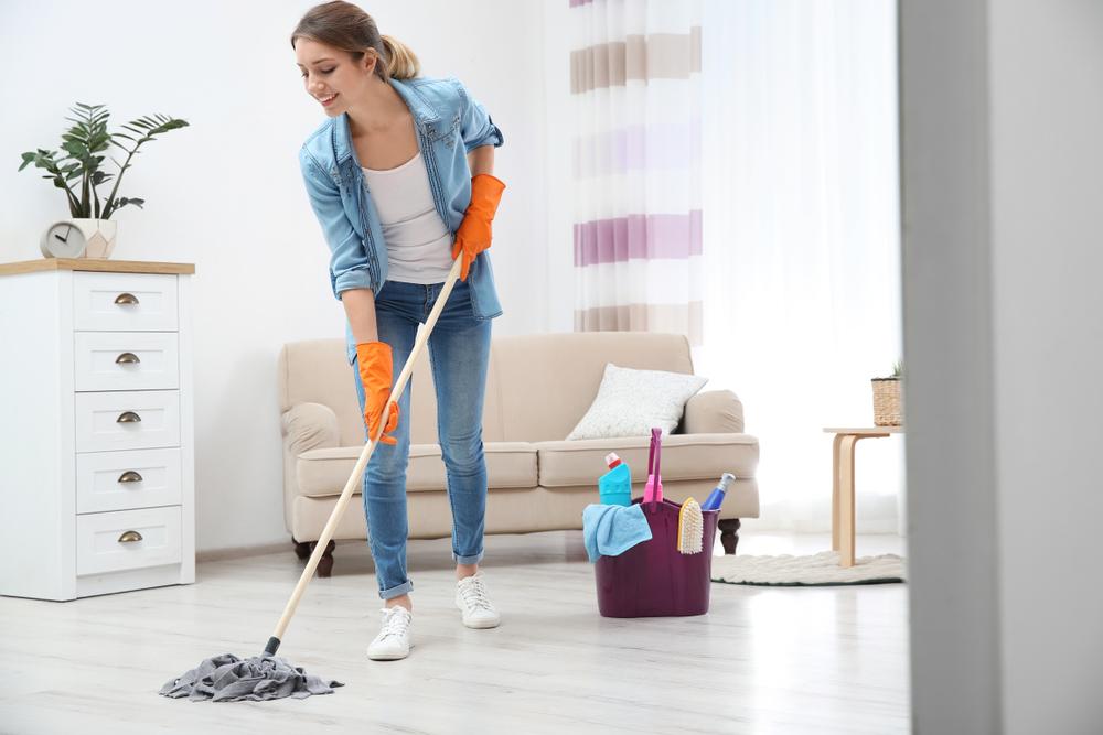 société de ménage à domicile